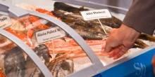 المعرض التاسع للمأكولات البحرية 2015