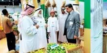 انطلاق الحملة التفتيشية الثانية للرقابة الغذائية على المنشآت الزراعية