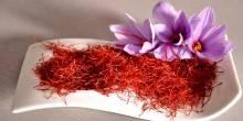 جامعة الإمارات تسعى لمعالجة السرطان بالنباتات