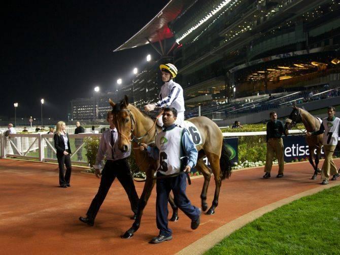 20121112_Meydan-Racing-Race-4