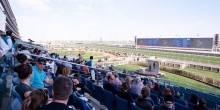 سباقات الخيل في ميدان 2015 – 2016 (السباق الثالث)