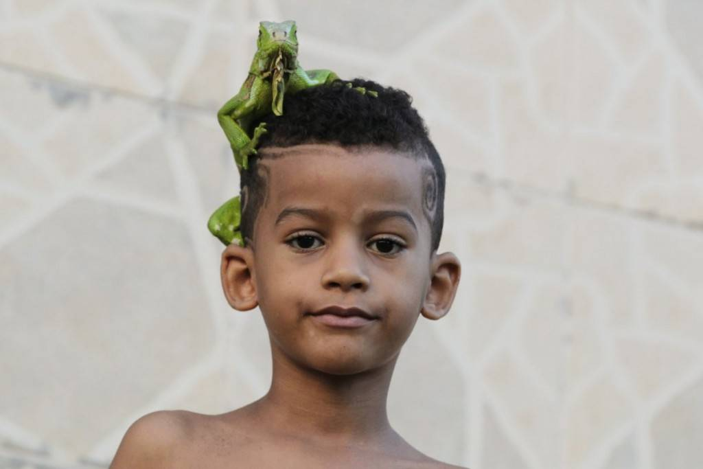 a-boy-stands-outside-his-home-with-an-iguana-on-his-head-in-salvador-brazil-1024x683