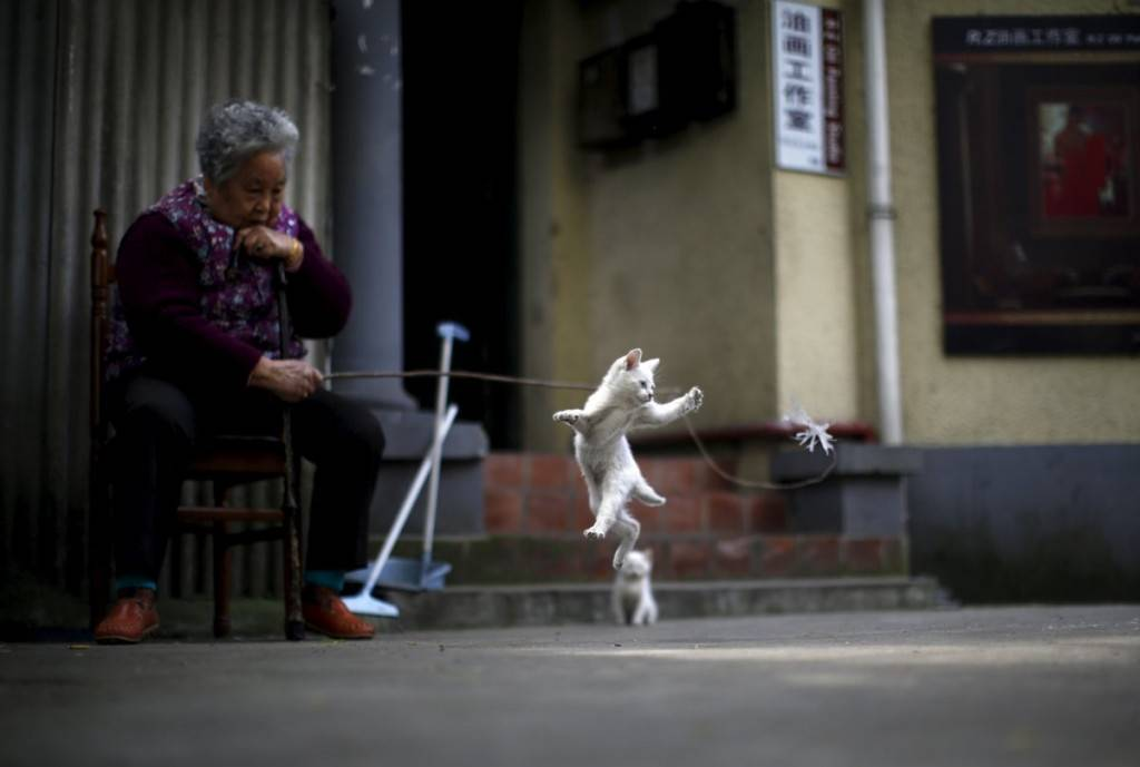 a-woman-plays-with-a-kitten-inside-of-a-line-house-in-downtown-shanghai-china-1024x689