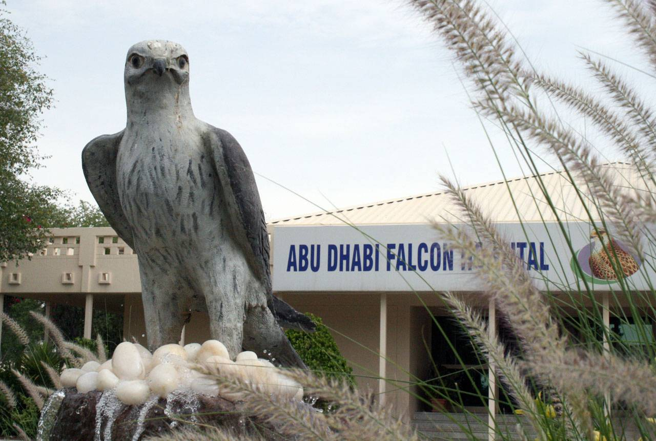 abu-dhabi-falcon-hospital