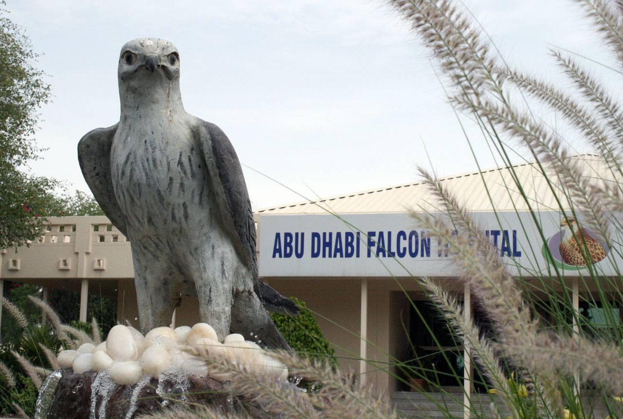 abu-dhabi-falcon-hospital