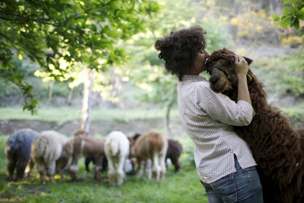 lisa-vella-gatt-46-hugs-an-alpaca-on-her-farm-near-benfeita-portugal-1024x683