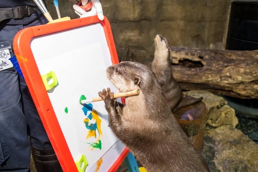 'Great-Otter-Art-Exhibition'-at-Dubai-Aquarium-Underwater-Zoo-2