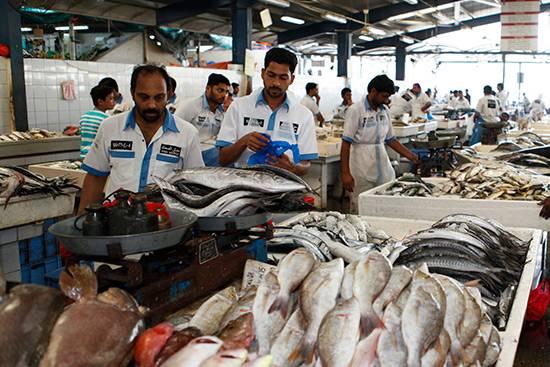 article-dubai-deira-Fish-market-1