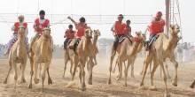 التراث الإماراتي يعلن عن بدء التسجيل في مهرجان سلطان بن زايد 2016
