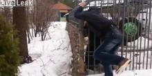 بالفيديو: لهذا السبب لا تحاول المزح مع دب مفترس