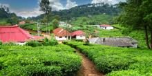 مناطق لا تفوت زيارتها في كيرالا الهندية