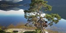 بالصور: lodge treehouse أكثر البقاع رومانسية في بريطانيا