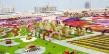 حديقة الزهور بدبي أكبر حدائق العالم