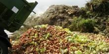 نفايات الأطعمة تقارب 3.2 مليون طن سنويًا في الإمارات