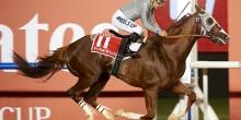 """الحصان """"كاليفورنيا كروم"""" يتوج بأغلى الألقاب في دبي"""