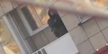 بالفيديو: لحظة مداهمة شقة انتحاريي بروكسل