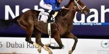 كل ما تريد معرفته عن كأس دبي العالمي للخيول 2016