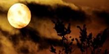 كوكب عطارد في سماء الإمارات الشهر المقبل