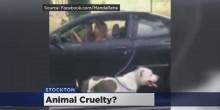 بالفيديو: امرأة تجر كلبها بسيارتها في شوارع كاليفورنيا