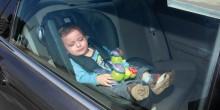 مطالبات بإلزام السائقين بوضع معقد الأطفال في السيارات بالإمارات