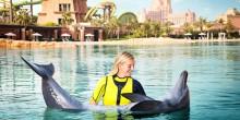 عش الإثارة و المغامرة في خليج الدلافين بفندق اتلانتس