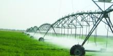 تقرير حول الزراعة في الإمارات العربية المتحدة