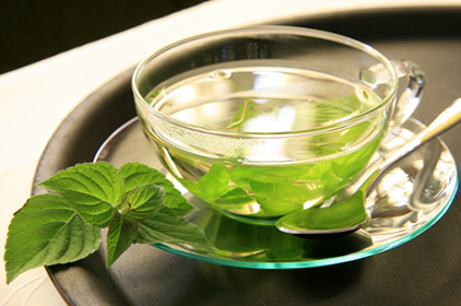 Close-up of cup of herbal tea with mint leaves on saucer