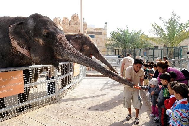 حديقة الحيوان في أبوظبي