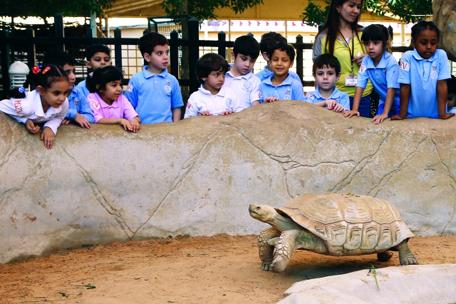 اطفال سعداء في حديقة الامارات للحيوان في الباهية ابوظبي . ديسمبر 10 2014 . تصوير مجدي اسكندر