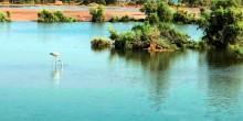 جزيرة بوطينة الإماراتية مرشحة للانظمام إلى عجائب الدنيا السبع