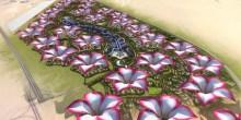 زهرة الصحراء: مدينة صديقة للبيئة في دبي
