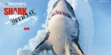 أول معرض أسبوعي لسمك القرش في دبي مول