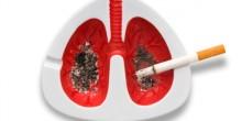 فيديو يظهر ما يحدث للرئتين بعد تدخين 20 سيجارة