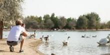 تمتع بأوقات من السكينة والهدوء بين أحضان بحيرات دبي الخلابة