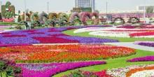 إنشاء 7 حدائق بـ52 مليون درهم في دبي