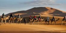 تعرف على قبائل الإمارات وأصولها