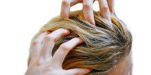 بلدية دبي: لم يتم رصد صالونات نسائية تعالج الشعر بالقمل