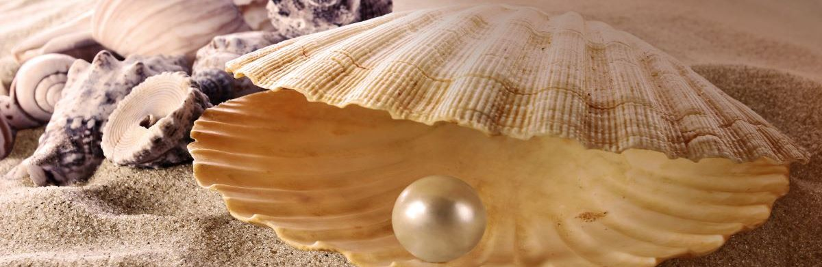 The Pearl Fishers 1200x400