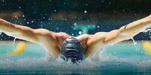 كأس العالم للسباحة في دبي