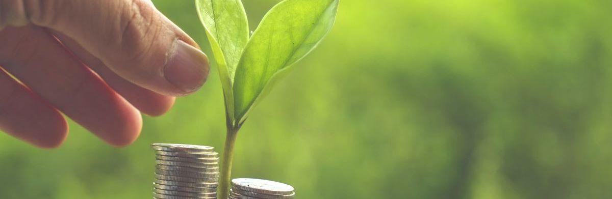 The World Green Economy Summit 1200x400