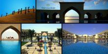 عروض مميزة للإقامة في فندق تلال ليوا الصحراوي أبو ظبي