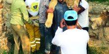 دائرة الأشغال تتدخل لإنقاذ أسد بعد تخلي صاحبه عنه في رأس الخيمة
