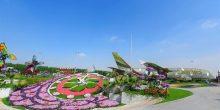 بالفيديو | أيقونة عملاقة من الزهور من طيران الإمارات و ميراكل غاردن