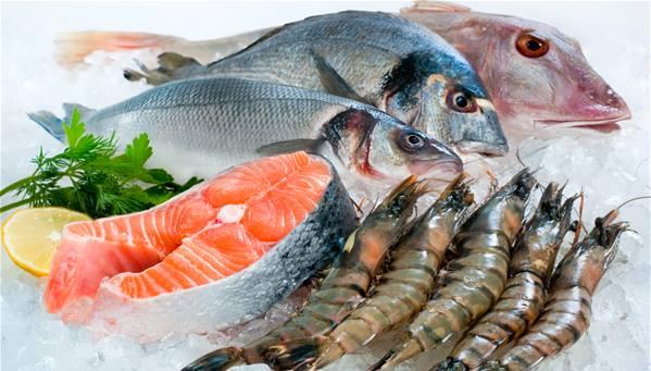فوائد الأسماك للحمل
