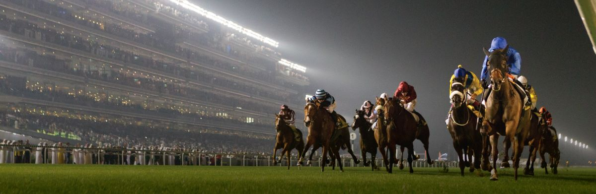 Meydan-Horses-4-hero-desktop-events-spotlight