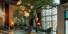 تعرف على عروض فندق سوفيتل دبي جميرا بيتش لشهر فبراير