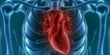 روبوت يحل مشكلة فشل القلب ليضخ الدم من جديد