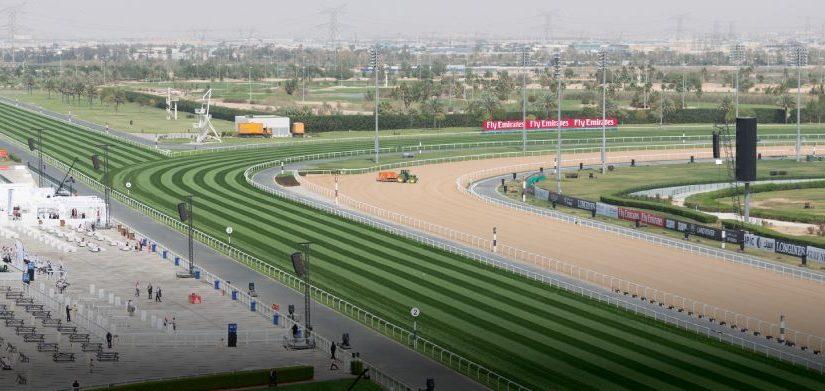 Meydan-Horses-6-hero-desktop-events-spotlight