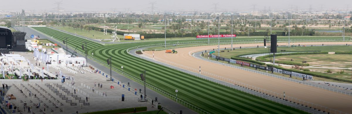 Meydan-Horses-6-hero-desktop-events-spotlight
