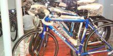 13 مخالفة لمحال ومستخدمي الدراجات الهوائية في الشارقة